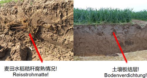 9、土壤剖面.png